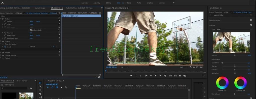 adobe premiere pro cc 2021 crack download
